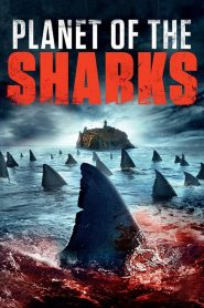 Planete des requins streaming vf