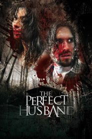The Perfect Husband papystreaming