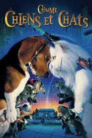 Comme chiens et chats streaming vf