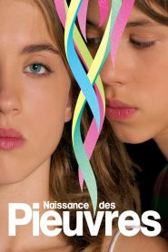Naissance des pieuvres streaming vf