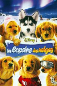 Les Copains des neiges streaming vf