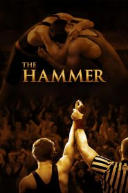 The Hammer streaming vf