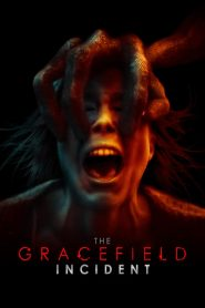 The Gracefield Incident streaming vf