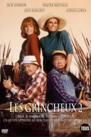 Les grincheux 2 streaming vf