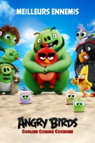Angry Birds, Copains comme cochons streaming vf