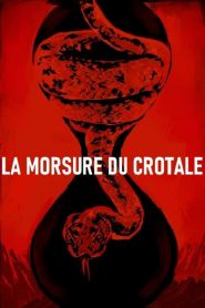 La Morsure du crotale streaming vf