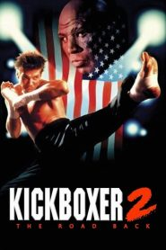 Kickboxer 2 : Le Successeur streaming vf